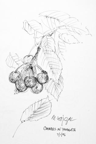 80. Cherries in Yamagata 7-1-06